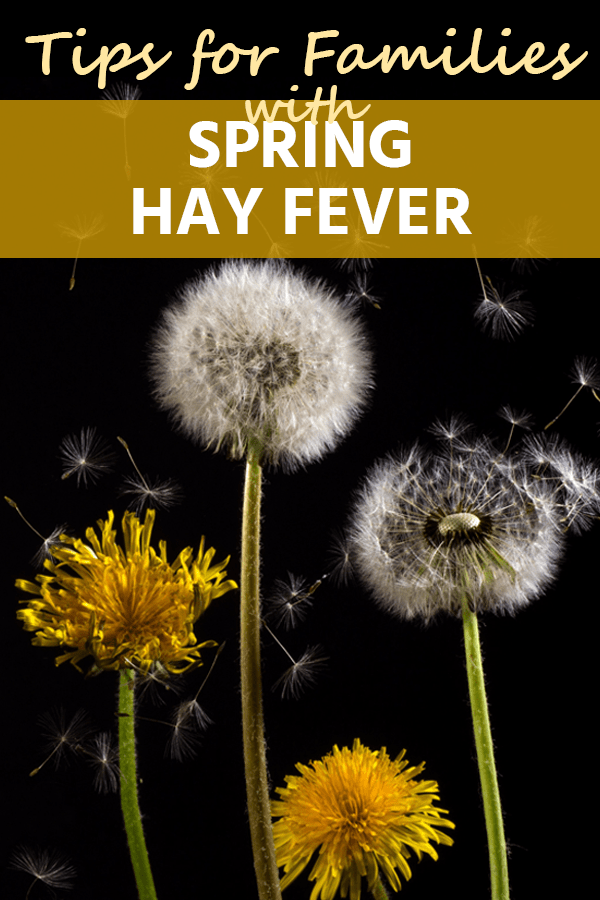 Spring brings budding tree leaves, flowers, and fresh grass that cause hay fever. Here are some tips for families with spring hay fever.