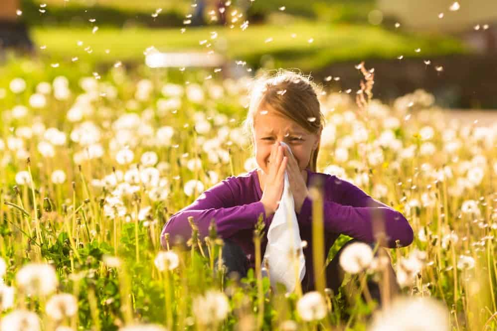 Tips for families with spring hay fever